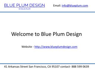 Luxury Kitchen Cabinets-BluePlumDesign.com