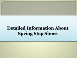 Detailed Information About Spring Step Shoes