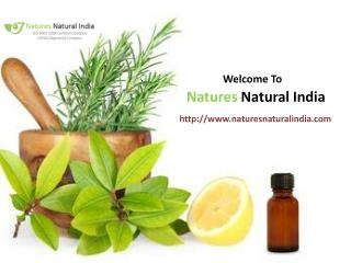 Natures Naural India online Oil Suppliers