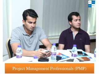 Project Management Professionals (PMP)