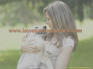 Las Vegas Dog Trainers