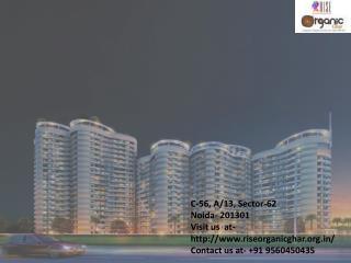 Rise Organic Ghar NH 24 Ghaziabad- 9560450435