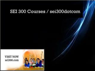 SEI 300 Courses / sei300dotcom