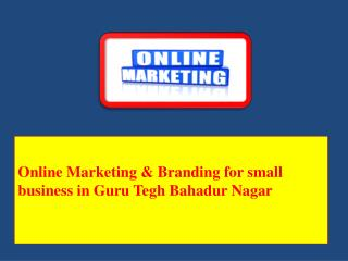 Online Marketing & Branding for small business in Guru Tegh Bahadur Nagar