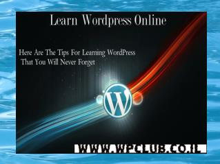 WordPress Course | WordPress Course Online