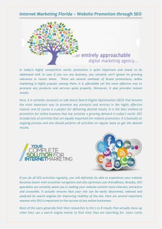 Internet Marketing Florida – Website Promotion through SEO