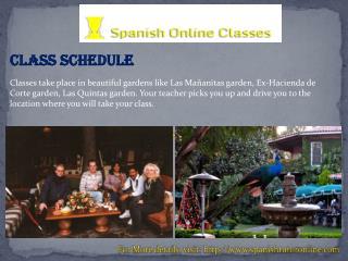 Spanish class online