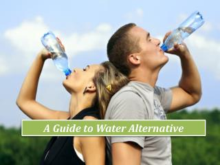 A Guide To Water Alternative | Birch Water
