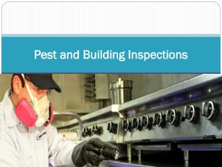 Pest and Building Inspections