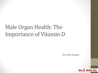 Male Organ Health: The Importance of Vitamin D