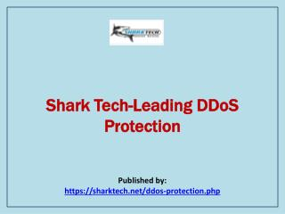 Shark Tech-Leading DDoS Protection