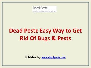 Dead Pestz