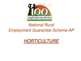 National Rural  Employment Guarantee Scheme-AP   HORTICULTURE