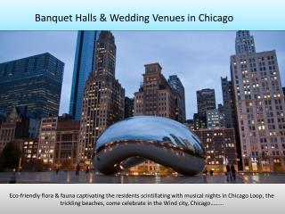 Banquet halls, party halls, wedding venues in Chicago