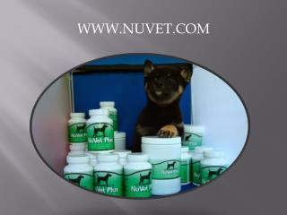 NuVet Labs:The Groomer�s Role in Pet Nutrition