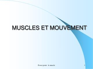 Power point : le muscle