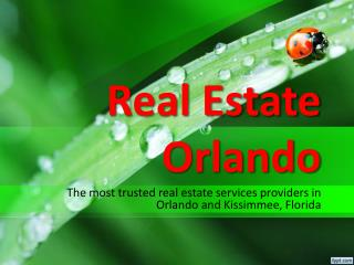 kissimmee real estate