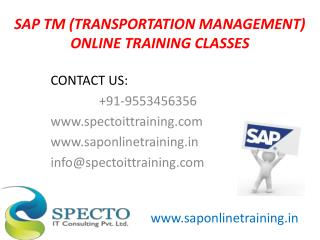Sap tm online training classes in USA