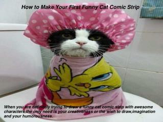 How to Make Your First Funny Cat Comic Strip
