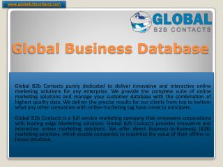 Global Business Database Company