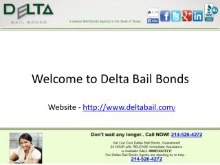 Bail bonds in irving