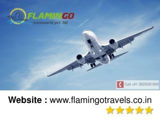Thai food flamingo travels