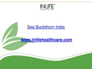 Buy Sea Buckthorn Oil Capsules India | Inlifehealthcare