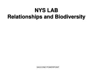 NYS LAB Relationships and Biodiversity