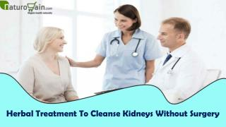 Herbal Treatment To Cleanse Kidneys Without Surgery