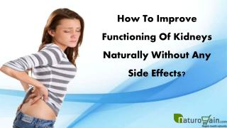 How To Improve Functioning Of Kidneys Naturally Without Any Side Effects?