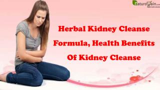 Herbal Kidney Cleanse Formula, Health Benefits Of Kidney Cleanse