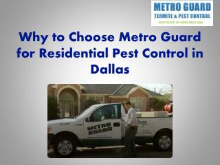 Why to Choose Metro Guard for Residential Pest Control in Dallas