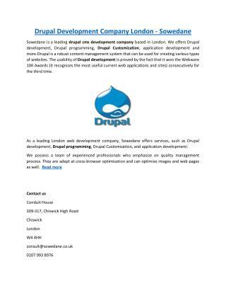 Drupal Development Company London - Sowedane