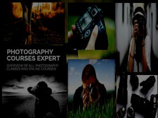 Browse photographycourses.expert to Become Professional Photographer