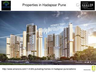 Properties in Hadapsar Pune