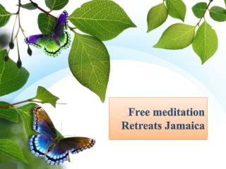 Impressive Highlights of Yoga Retreat for Beginners