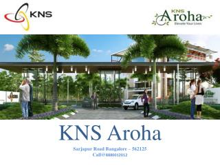 BDA Approval plots for saleKNS Aroha