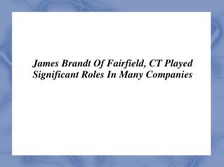 James Brandt Of Fairfield, CT Played Significant Roles In Many Companies