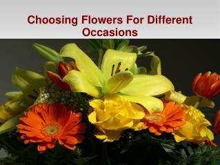 Choosing Flowers For Different Occasions