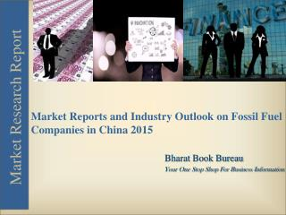 Market Report and Industry Outlook on Fossil Fuel Companies in China 2015