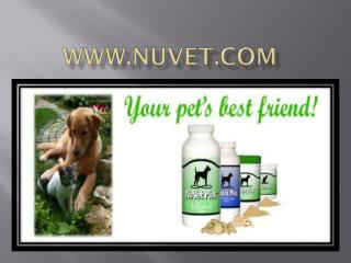 NuVet Reviews: Dogs with Allergies See Relief with NuVet Plus