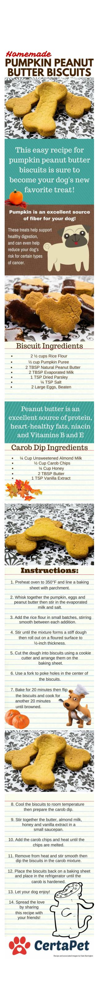 Homemade Pumpkin Peanut Butter Biscuits
