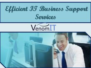 Efficient IT Business Support Service