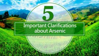 Arsenic in Brown Rice