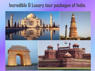 Incredible & Luxury tour packages of India.