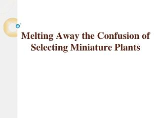 Melting Away the Confusion of Selecting Miniature Plants