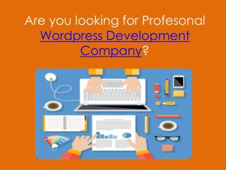 Wordpress theme development company in bangladesh, customization,Wordpress customization,wordpress plugins development,