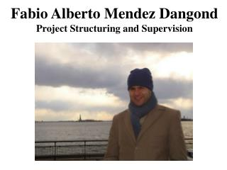 Fabio Alberto Mendez Dangond Project Structuring and Supervision