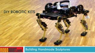 Diy robotic kits