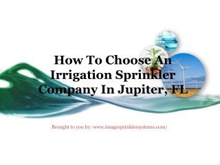 How To Choose An Irrigation Sprinkler Company In Jupiter, FL